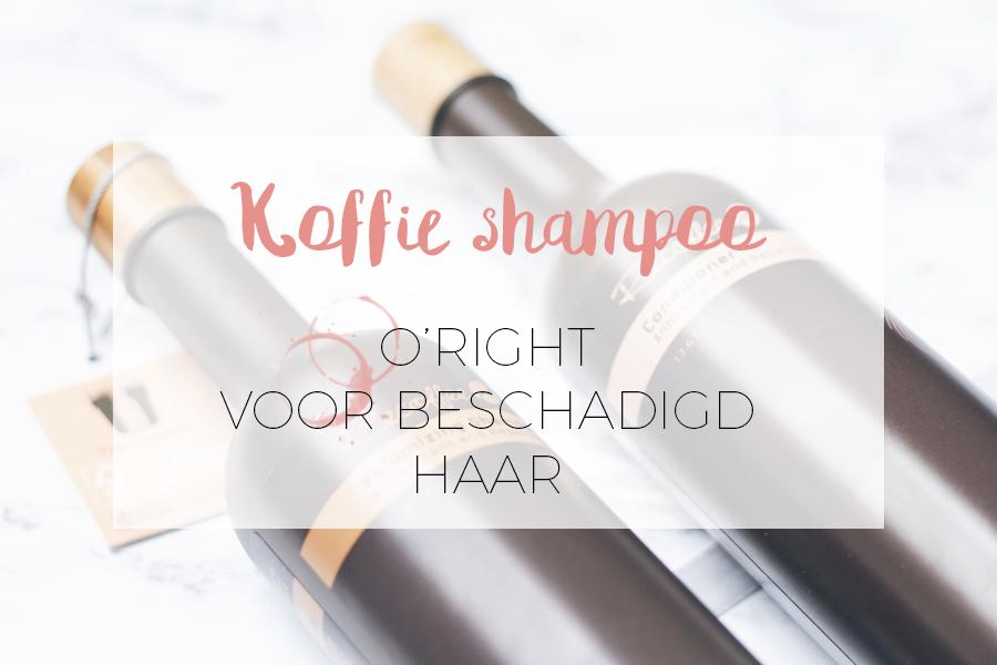 KOFFIE SHAMPOO VAN O'RIGHT: BESCHADIGD HAAR