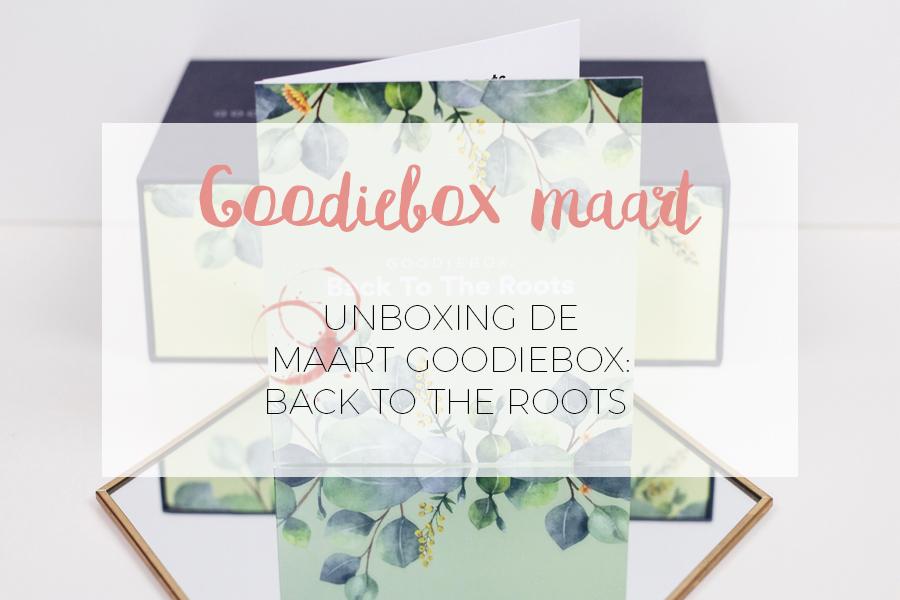GOODIEBOX MAART UNBOXING!